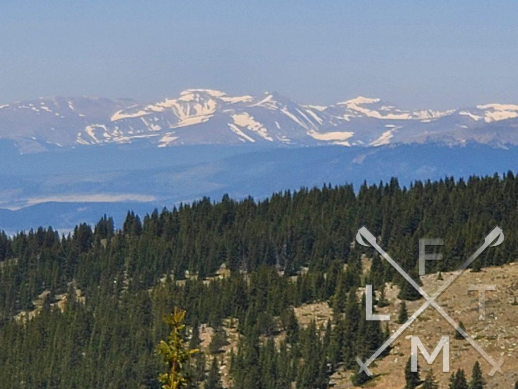 The view from the top of Ben Tyler trail.  To the west are snow capped mountains with more evergreen forest in the foreground