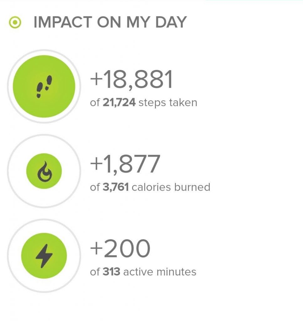 Stats from Fitbit.com. 18,881 steps