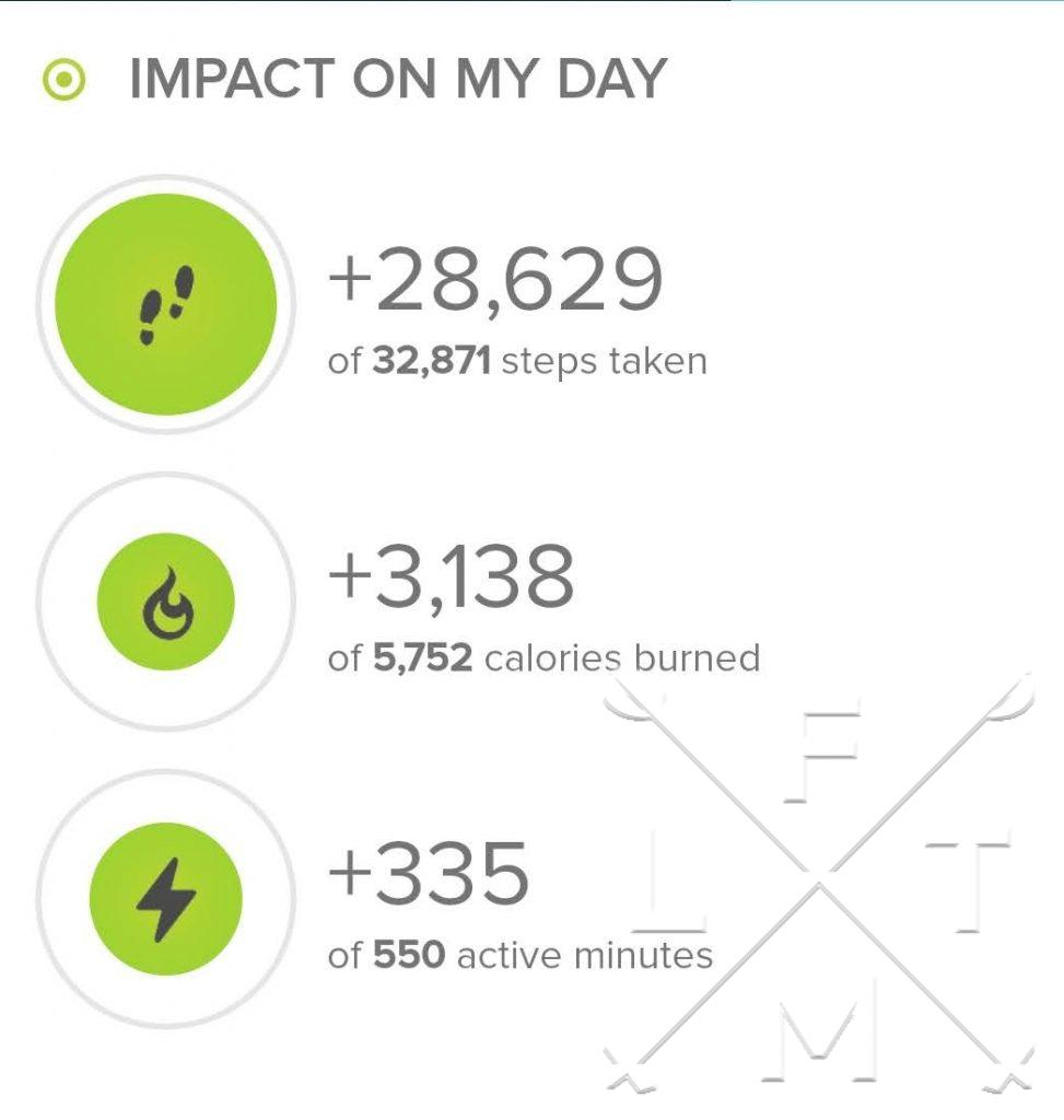 Stats from Fitbit.com from todays hike. Just over 28,000 steps.