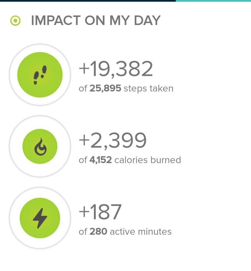 The step stats from today's hike according to fitbit.com.  Today I took 19,382 steps.