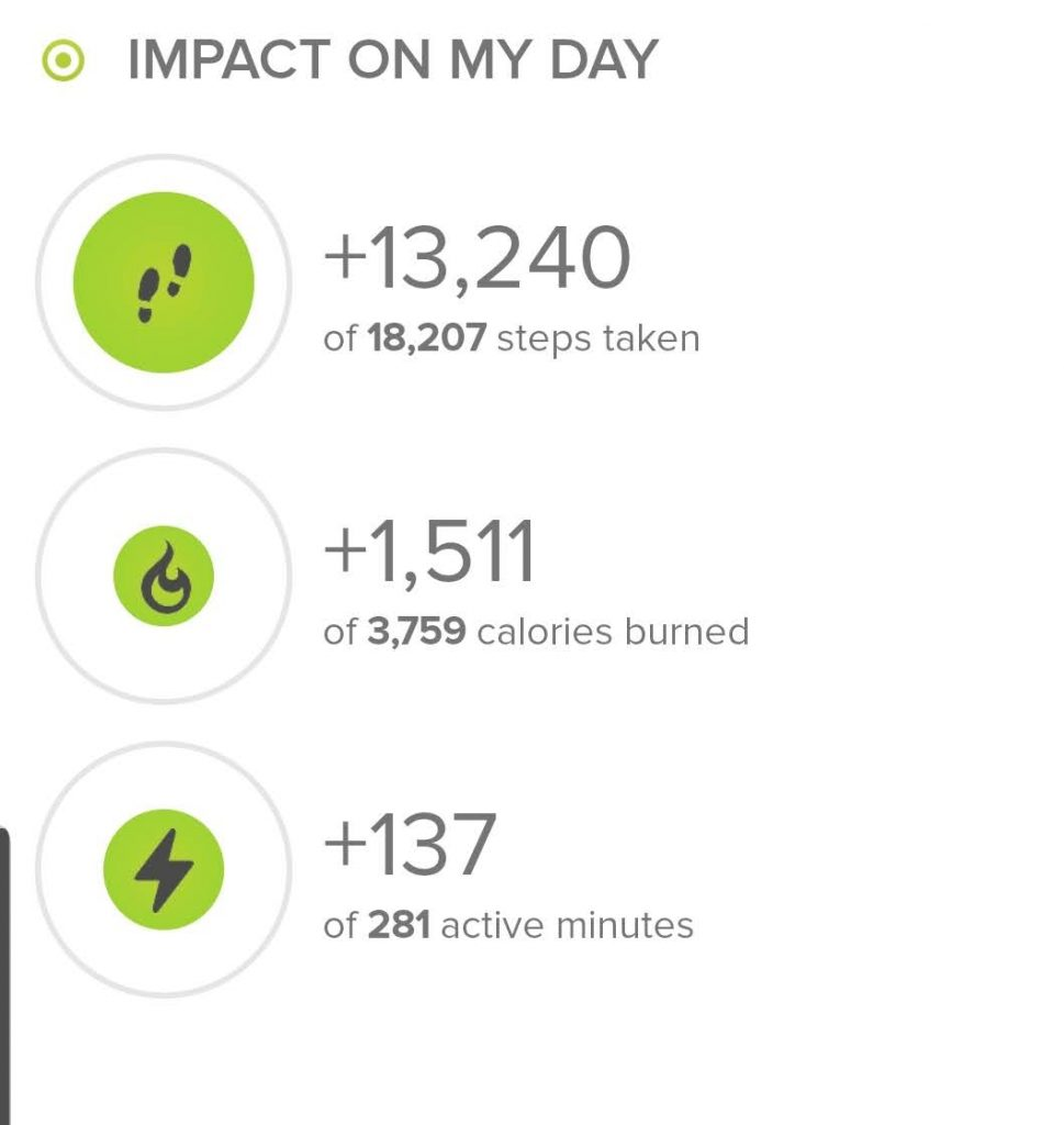 Stats from the hike today.  My fitbit registered 13, 240 steps.