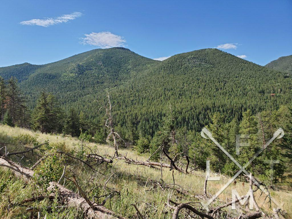 Two large hills, completely covered with pine trees underneath a bright blue sky.