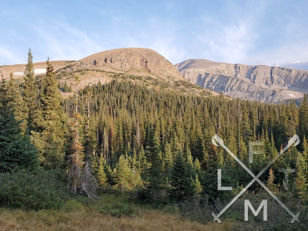 The view of the Indian Peaks from the Niwot Cutoff trail.  There are pine trees in the foreground with huge mountains in the background.