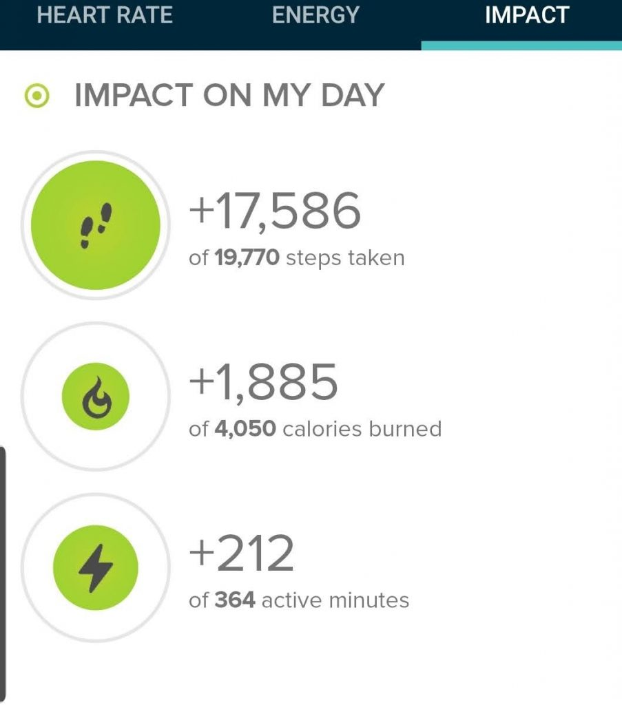 The step count from today's hike.  17,586 steps according to my fitbit.