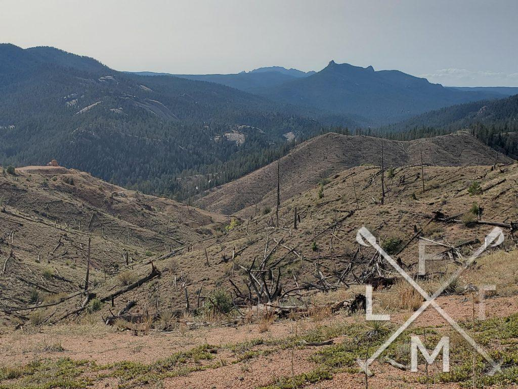 A views of the burn scar with dead and partially burnt trees in the foreground and lush tree lined mountain tops in the distance.