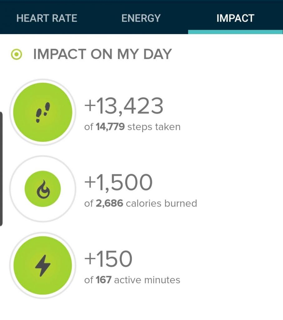 The step count from my hike according to my fitbit.  Today's hike was 13,423 steps.