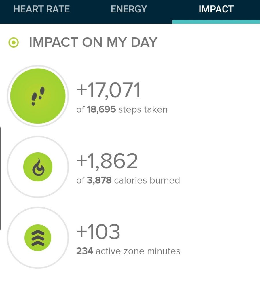 Step count from my fitbit today was 17,071 steps.