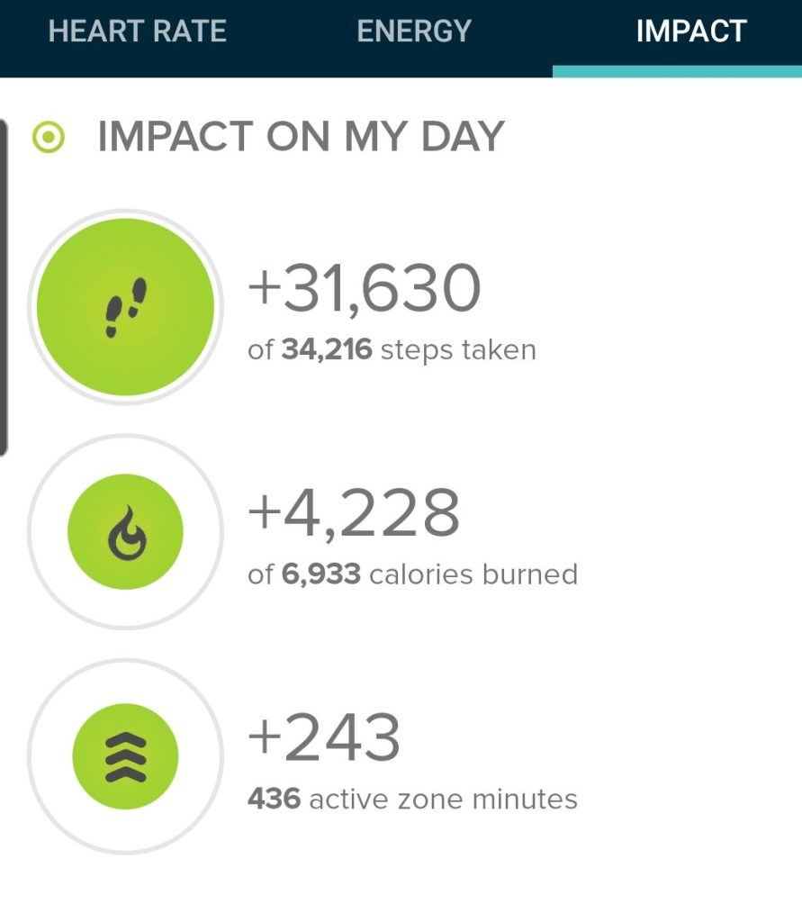 The step count from today's hike was 31, 630 steps.