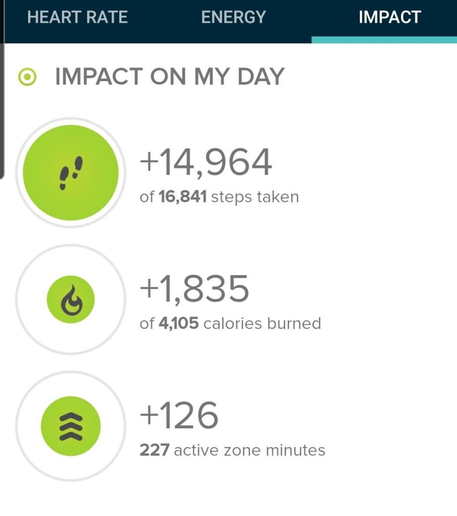 The step count from today's hike on the Palmer trail was 14, 964 steps.