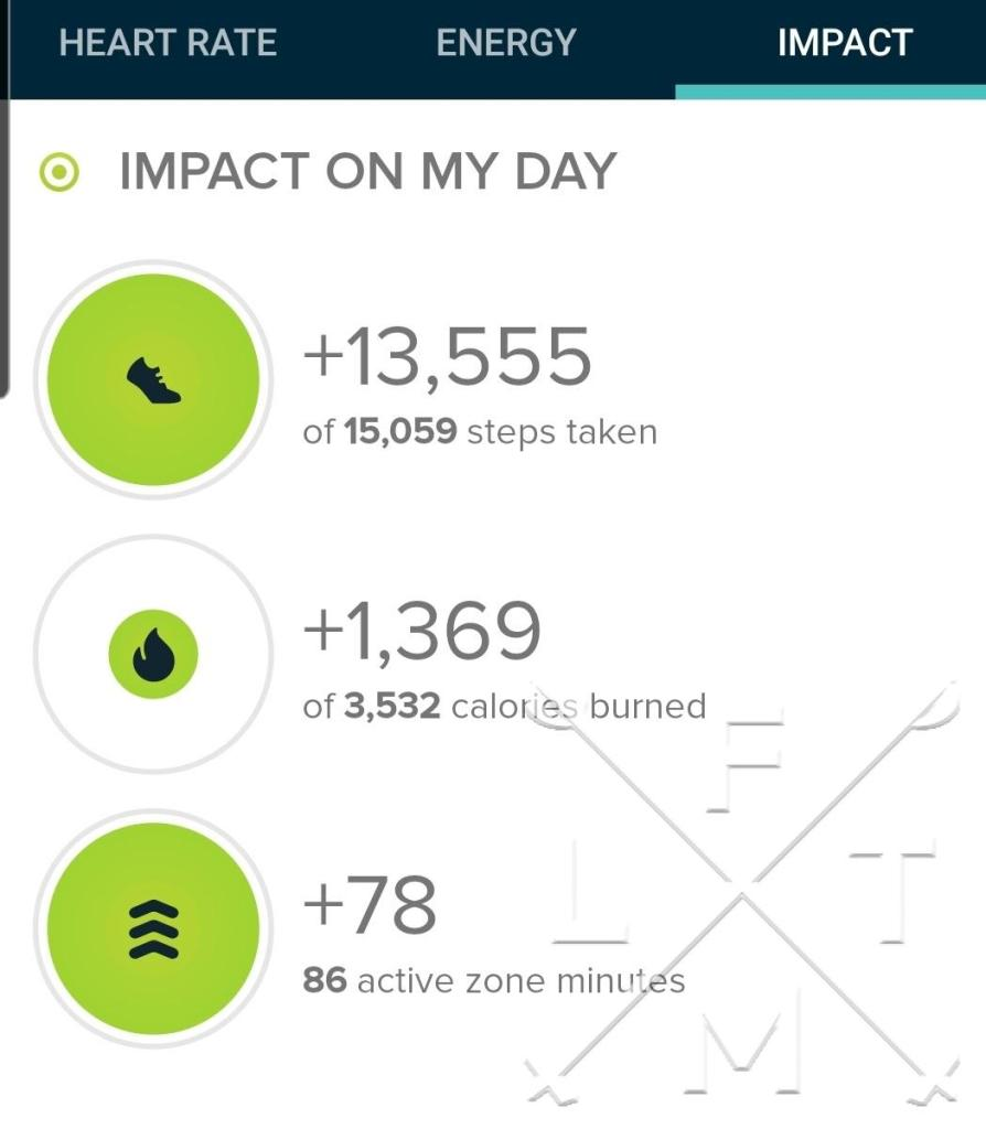The step count from the Spruce Mountain trail loop was 13,555 steps.