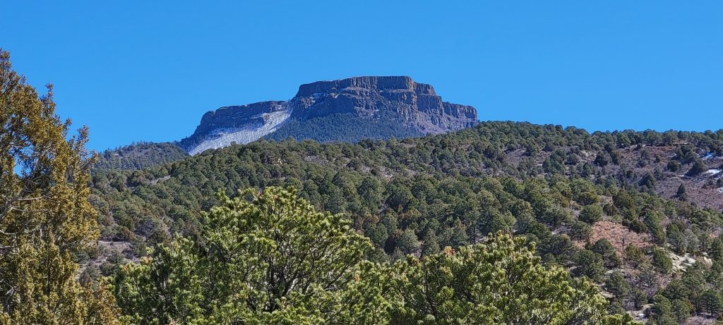 The view of Fisher's Peak from the first look trail at Fishers Peak State Park.  The peak rises above a tree covered series of hills.